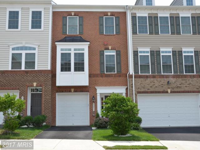 42211 Plainridge Terrace, Aldie, VA 20105 (#LO10010862) :: Arlington Realty, Inc.
