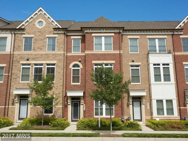 20617 Duxbury Terrace, Ashburn, VA 20147 (#LO10010964) :: Pearson Smith Realty