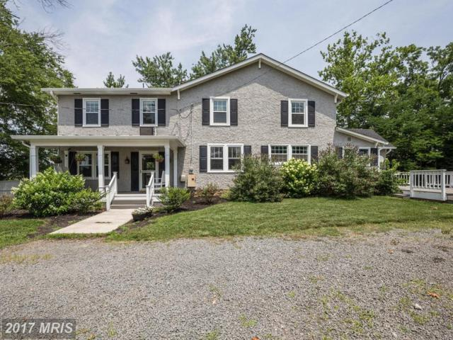 41631 Olivine Place, Aldie, VA 20105 (#LO10011256) :: Wicker Homes Group