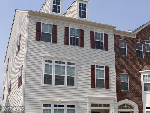 25363 Patriot Terrace, Aldie, VA 20105 (#LO10011267) :: LoCoMusings