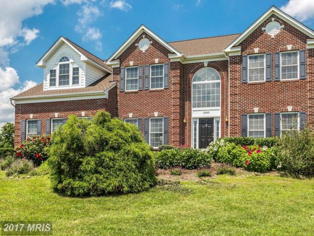 15932 Charter House Lane, Purcellville, VA 20132 (#LO10011389) :: LoCoMusings