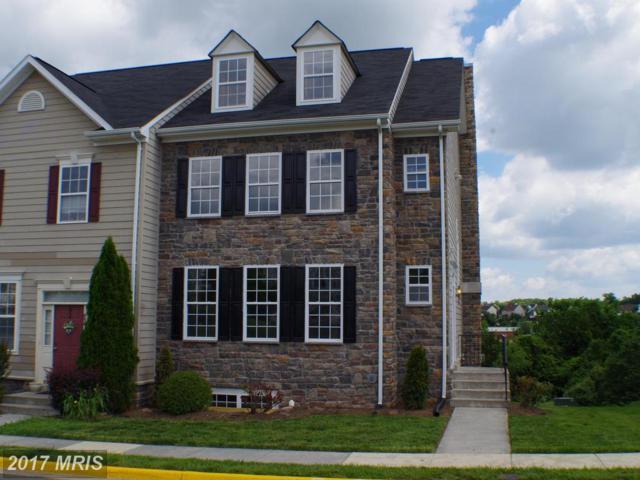 832 Linfield Terrace NE, Leesburg, VA 20176 (#LO10011417) :: Century 21 New Millennium