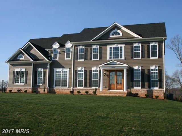 Sunny Ridge, Round Hill, VA 20141 (#LO10011881) :: LoCoMusings