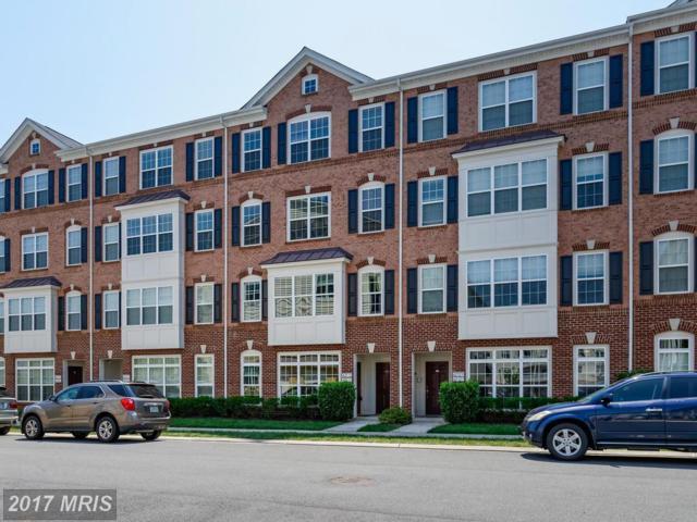 42533 Highgate Terrace, Ashburn, VA 20148 (#LO10012141) :: Pearson Smith Realty