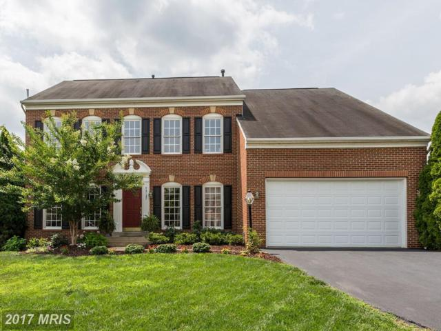 43127 Teaberry Drive, Leesburg, VA 20176 (#LO10012558) :: Pearson Smith Realty