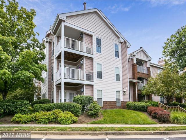 21012 Timber Ridge Terrace #301, Ashburn, VA 20147 (#LO10012614) :: A-K Real Estate