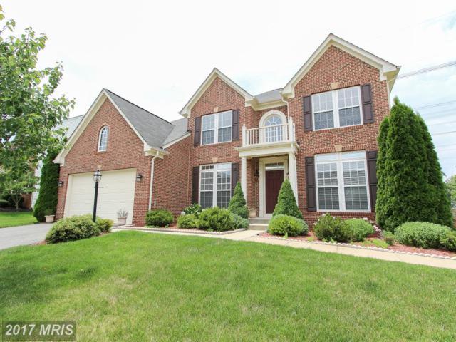 25579 Laughter Drive, Aldie, VA 20105 (#LO10012643) :: A-K Real Estate