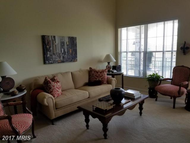 46596 Drysdale Terrace #300, Sterling, VA 20165 (#LO10012656) :: A-K Real Estate