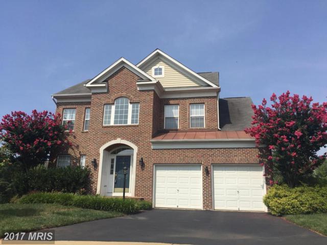 43027 Lake Ridge Place, Leesburg, VA 20176 (#LO10012744) :: A-K Real Estate
