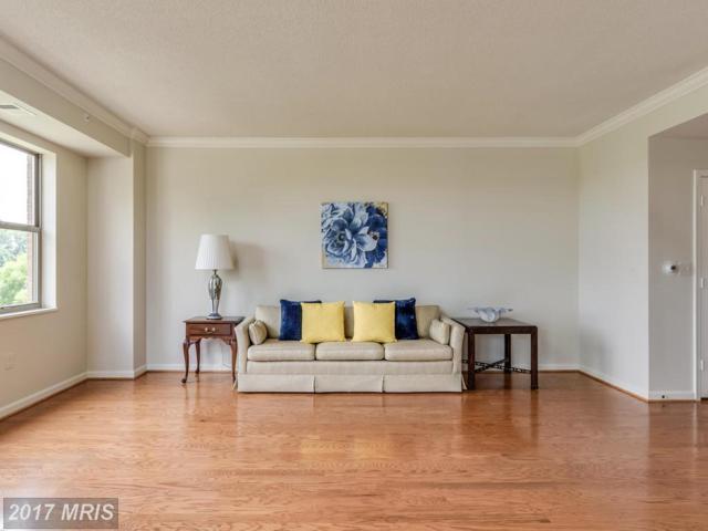 19370 Magnolia Grove Square #209, Leesburg, VA 20176 (#LO10013026) :: Pearson Smith Realty