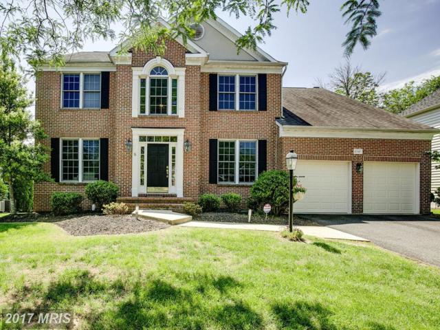 43349 Royal Burkedale Street, Chantilly, VA 20152 (#LO10013071) :: ExecuHome Realty