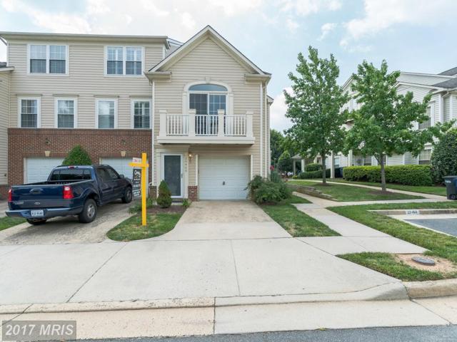 20406 Alderleaf Terrace, Ashburn, VA 20147 (#LO10013879) :: Wicker Homes Group