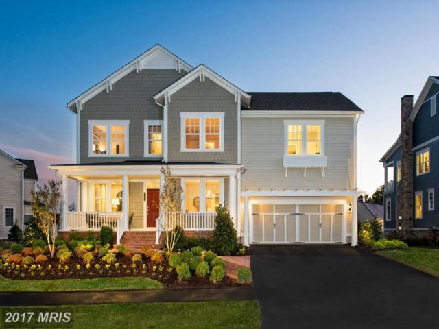 24674 Black Willow Drive, Aldie, VA 20105 (#LO10014160) :: Wicker Homes Group