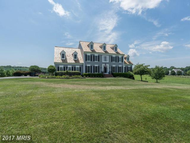 37279 Hunt Valley Lane, Purcellville, VA 20132 (#LO10014201) :: Provident Real Estate