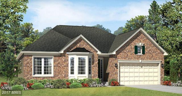 24004 Tenbury Wells Place, Aldie, VA 20105 (#LO10014754) :: Wicker Homes Group