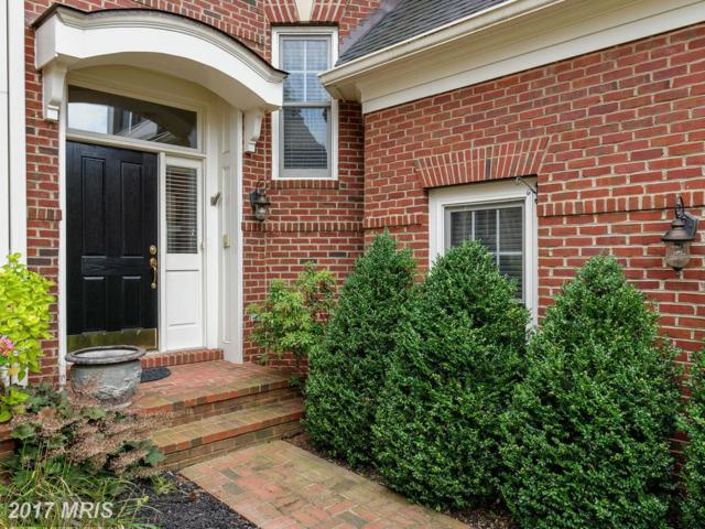 43711 Burning Sands Terrace, Leesburg, VA 20176 (#LO10015768) :: Pearson Smith Realty