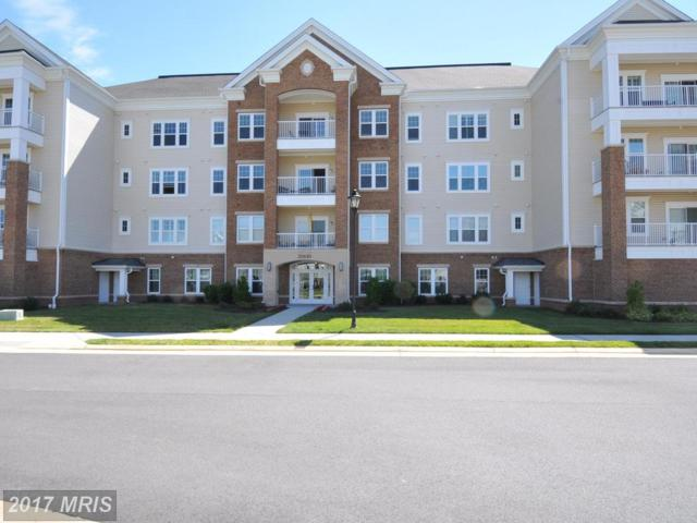 20610 Hope Spring Terrace #103, Ashburn, VA 20147 (#LO10015837) :: Pearson Smith Realty