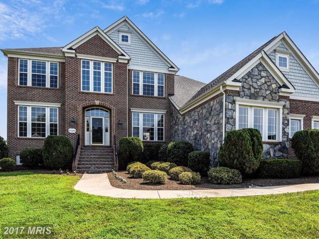 43320 Cedar Pond Place, Chantilly, VA 20152 (#LO10015846) :: Provident Real Estate