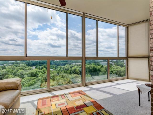 19375 Cypress Ridge Terrace #1106, Leesburg, VA 20176 (#LO10016575) :: LoCoMusings
