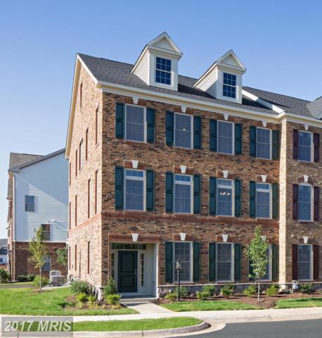 43159 Clarendon Square, Ashburn, VA 20148 (#LO10016697) :: Mosaic Realty Group