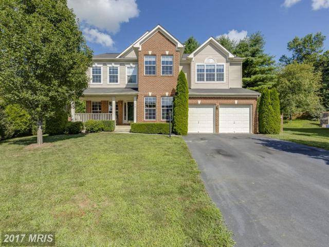 312 Old Dominion Lane, Purcellville, VA 20132 (#LO10016798) :: Provident Real Estate