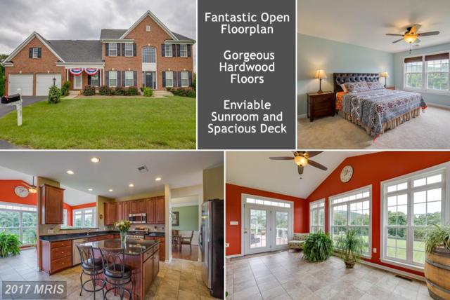 14167 Paris Breeze Place, Purcellville, VA 20132 (#LO10016978) :: Provident Real Estate