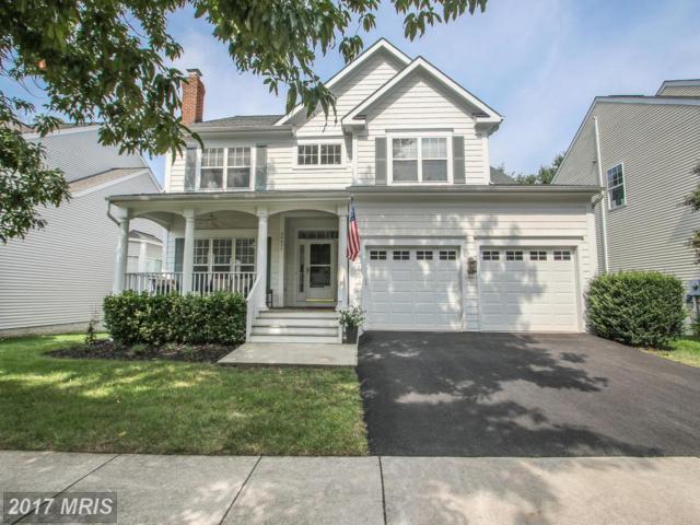 26077 Rachel Hill Drive, Chantilly, VA 20152 (#LO10017304) :: Provident Real Estate