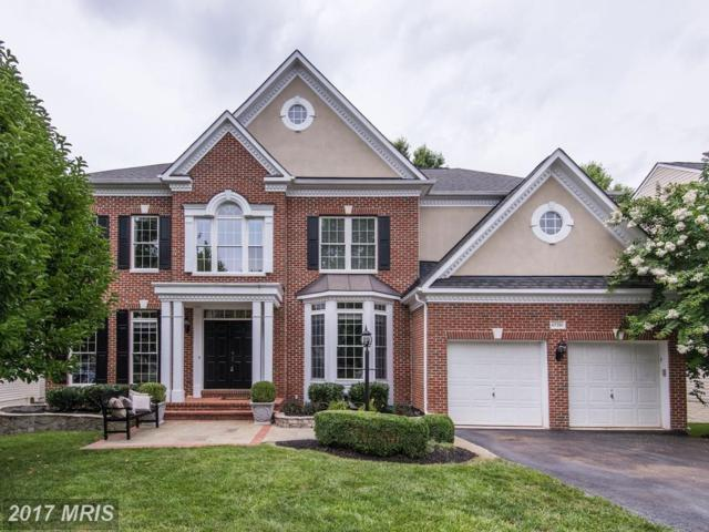 47281 Middle Bluff Place, Sterling, VA 20165 (#LO10019198) :: Pearson Smith Realty