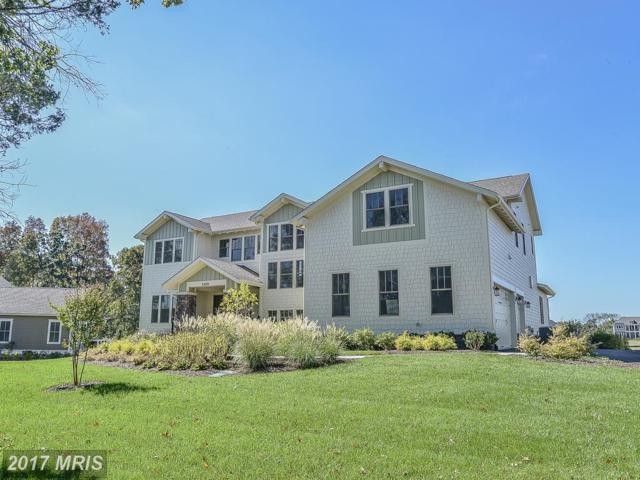 41789 Prairie Aster Court, Ashburn, VA 20148 (#LO10019237) :: Labrador Real Estate Team