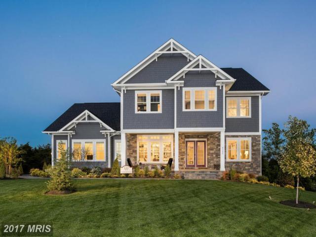 41790 Prairie Aster Court, Ashburn, VA 20148 (#LO10019243) :: Labrador Real Estate Team