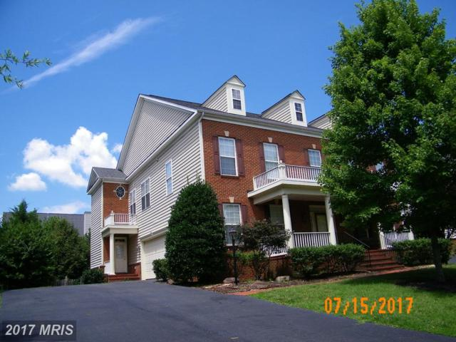 22819 Angelique Drive, Ashburn, VA 20148 (#LO10019825) :: Pearson Smith Realty
