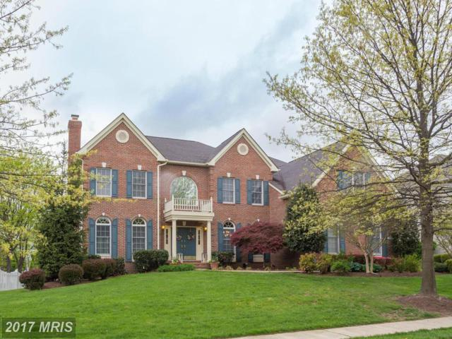 19961 Interlachen Circle, Ashburn, VA 20147 (#LO10021450) :: LoCoMusings