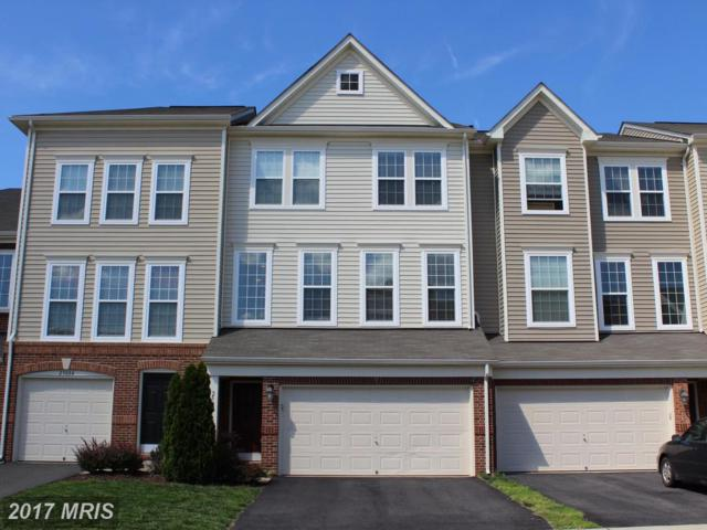 25096 Green Mountain Terrace, Aldie, VA 20105 (#LO10022189) :: The Greg Wells Team