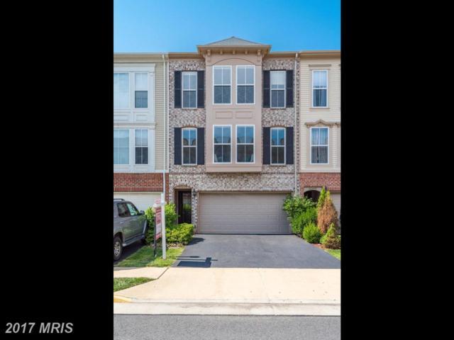 23445 Spice Bush Terrace, Ashburn, VA 20148 (#LO10022818) :: Pearson Smith Realty