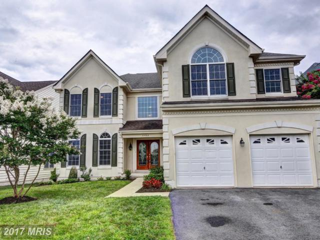 25768 Leonard Drive, Chantilly, VA 20152 (#LO10023075) :: Pearson Smith Realty