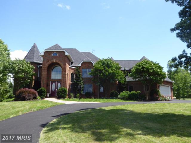 41155 Trotter Lane, Paeonian Springs, VA 20129 (#LO10023546) :: Pearson Smith Realty
