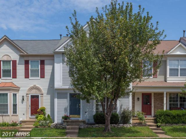 354 Millbrook Terrace NE, Leesburg, VA 20176 (#LO10024038) :: Pearson Smith Realty