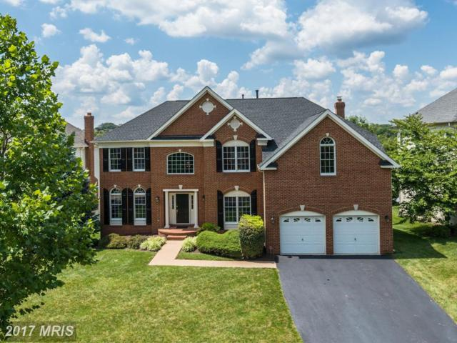 19673 Stanford Hall Place, Ashburn, VA 20147 (#LO10024267) :: The Greg Wells Team