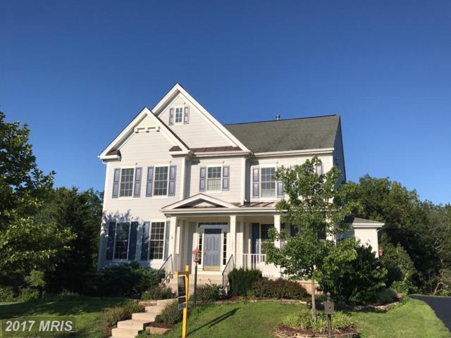 13526 Village Green Drive, Leesburg, VA 20176 (#LO10025127) :: Pearson Smith Realty