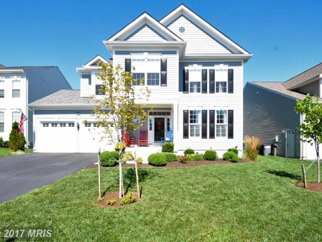 17663 Cleveland Park Drive, Round Hill, VA 20141 (#LO10025319) :: Pearson Smith Realty