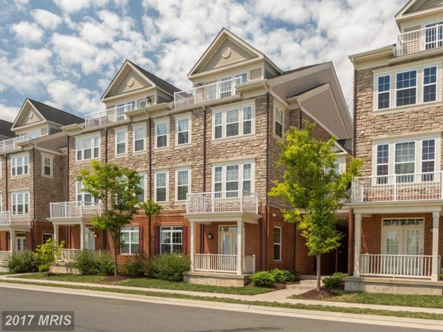21170 Belmont View Terrace, Broadlands, VA 20148 (#LO10025985) :: Pearson Smith Realty