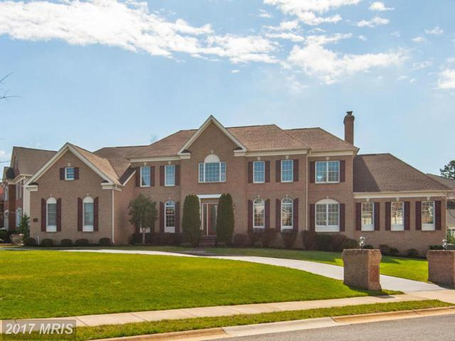 43571 Old Kinderhook Drive, Ashburn, VA 20147 (#LO10026142) :: LoCoMusings