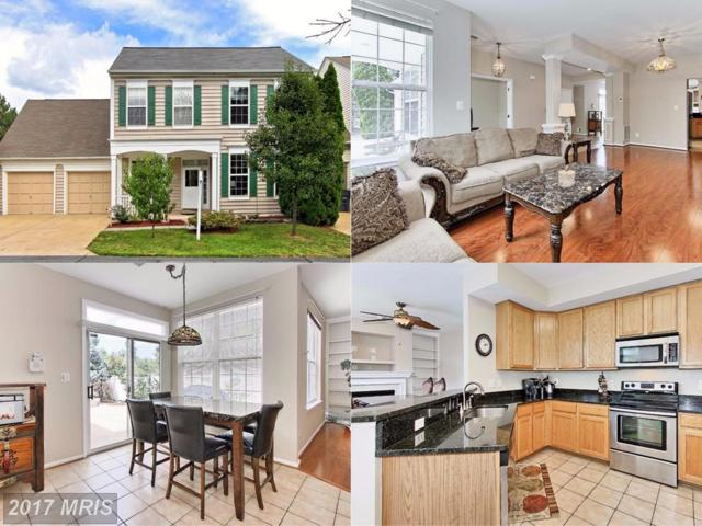43250 Day Lily Terrace, Ashburn, VA 20147 (#LO10027798) :: The Greg Wells Team