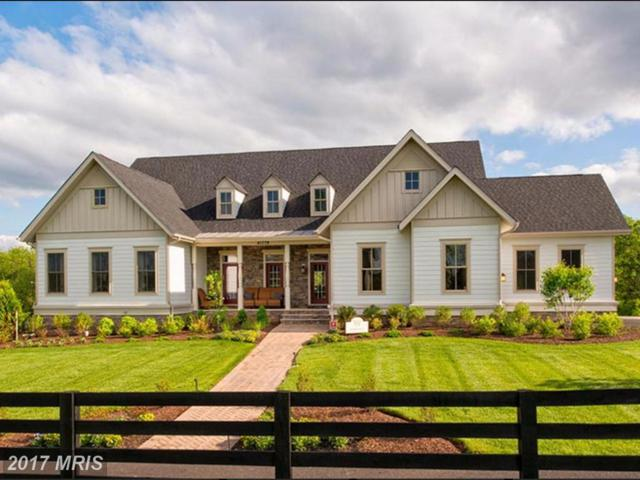 41785 Prairie Aster Court, Ashburn, VA 20148 (#LO10029128) :: LoCoMusings