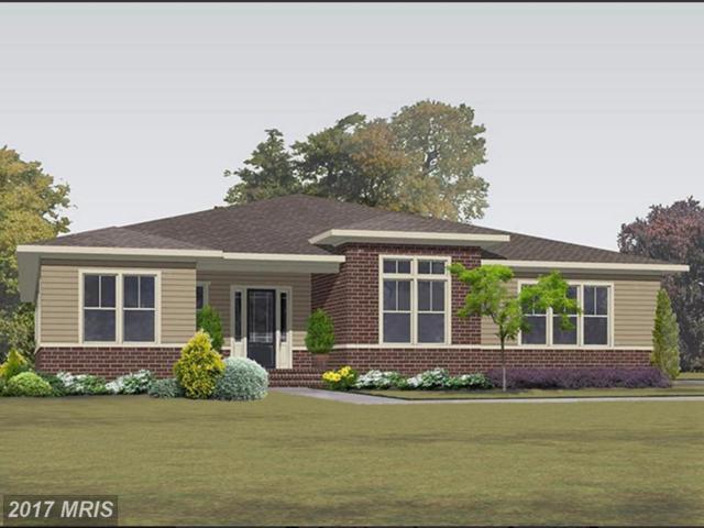 41773 Prairie Aster Court, Ashburn, VA 20148 (#LO10029170) :: Labrador Real Estate Team