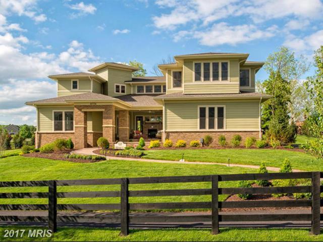 41776 Prairie Aster Court, Ashburn, VA 20148 (#LO10029171) :: Labrador Real Estate Team