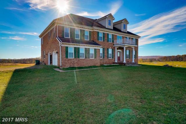 42931 Culps Hill Lane, Leesburg, VA 20176 (#LO10029318) :: Pearson Smith Realty