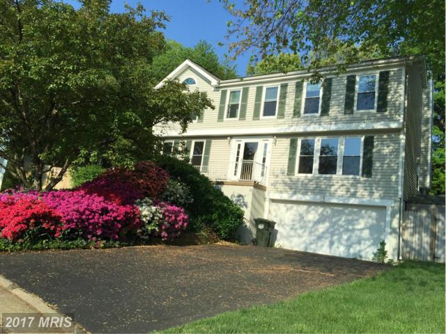 215 Trail Court, Sterling, VA 20164 (#LO10029357) :: Pearson Smith Realty