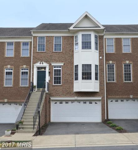 143 Ivy Hills Terrace, Purcellville, VA 20132 (#LO10029760) :: Pearson Smith Realty