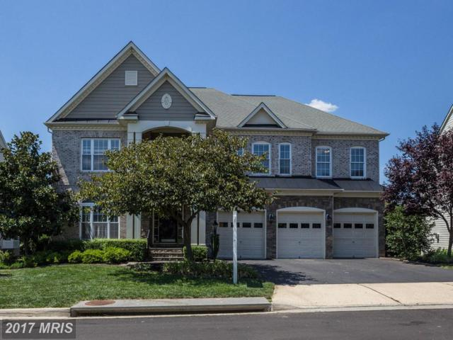 22189 Withers Grove Court, Broadlands, VA 20148 (#LO10029844) :: Wicker Homes Group